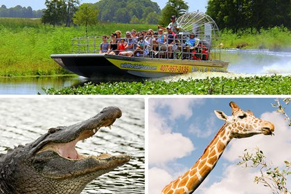 Wild Florida - Everglades Wildlife Park & Airboat Rides