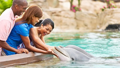 SeaWorld VIP Private Tours