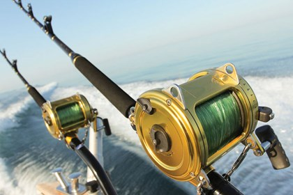 Party & Sport Fishing - from Miami