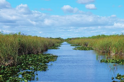 Miami Sightseeing & Everglades Airboat Combo