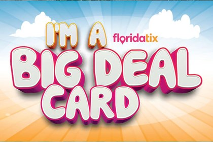 The Big Deal Card