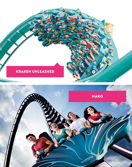 Kraken and Mako rides at SeaWorld Orlando