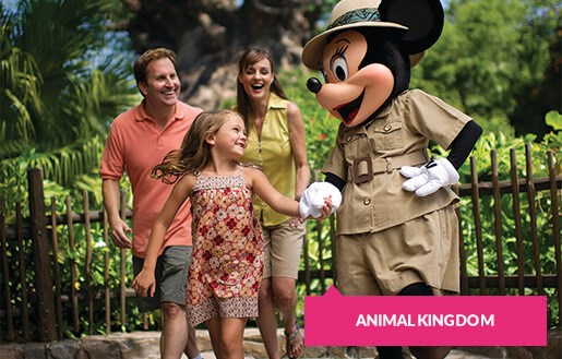 Safari Minnie and family at Animal Kingdom