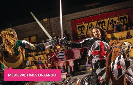 Mounted sword fight at the Medieval Times Orlando Dinner Show