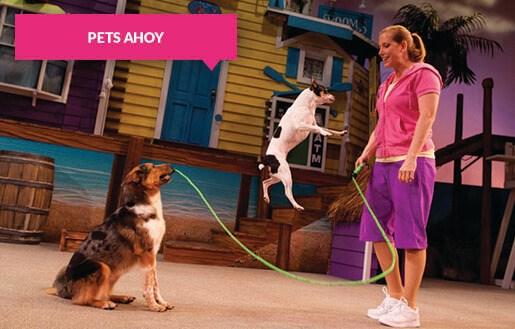 Pets Ahoy animal show