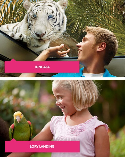 Boy with white tiger and girl with a bird