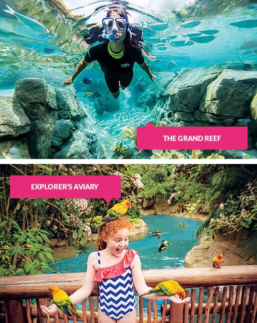 Snorkelling in the Grand Reef and girl with birds at the Explorer Aviary