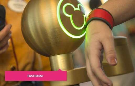 Scan your Magic Band