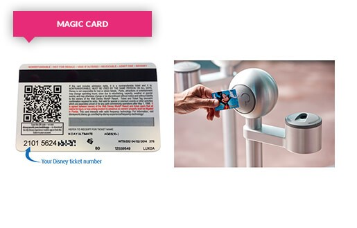 Scanning your Magic Card