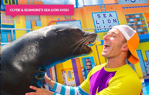 Clyde & Seamore's Sea Lion High show